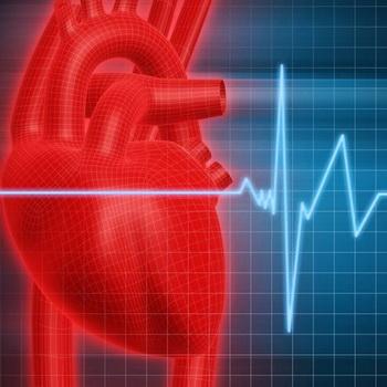 Профилактика аритмии сердца народными средствами