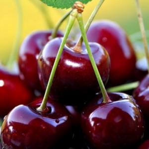 Как повысить аппетит у взрослого человека и набрать вес